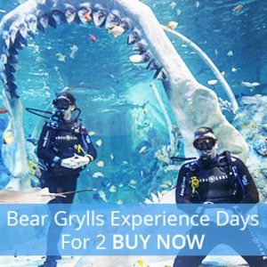 Buy the couple a Bear Grylls experience day for their anniversary.