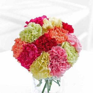 Buy her a beautiful bunch of Carnations.