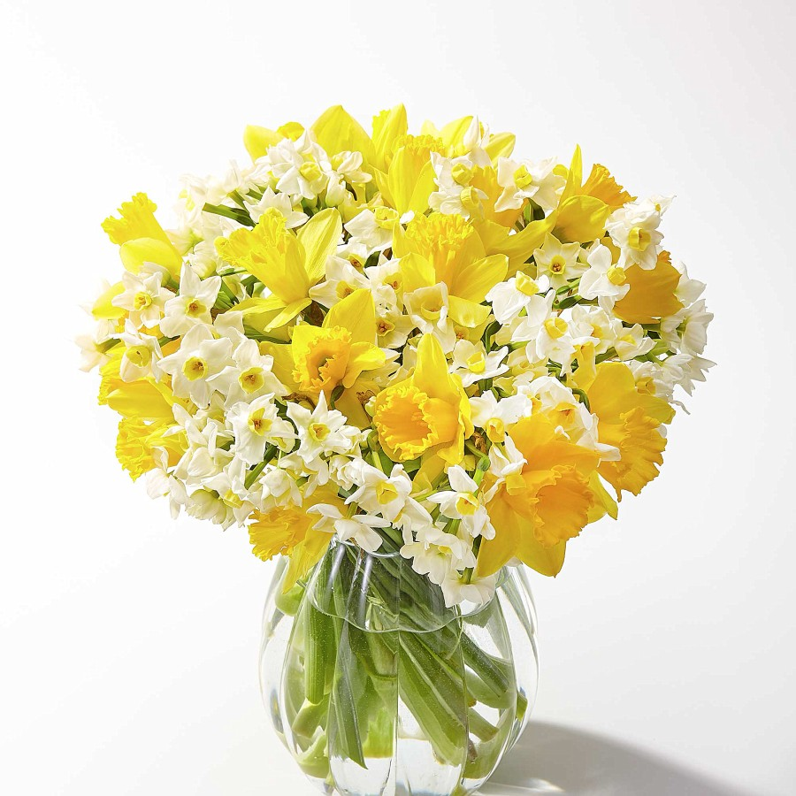 Buy a bouquet of daffodils the traditional flower for the 10th anniversary gift.