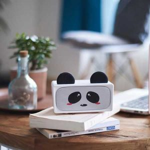 Buy her a bluetooth panda speaker