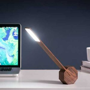 Buy him this Gingko Octagon One Desk Lamp in Walnut