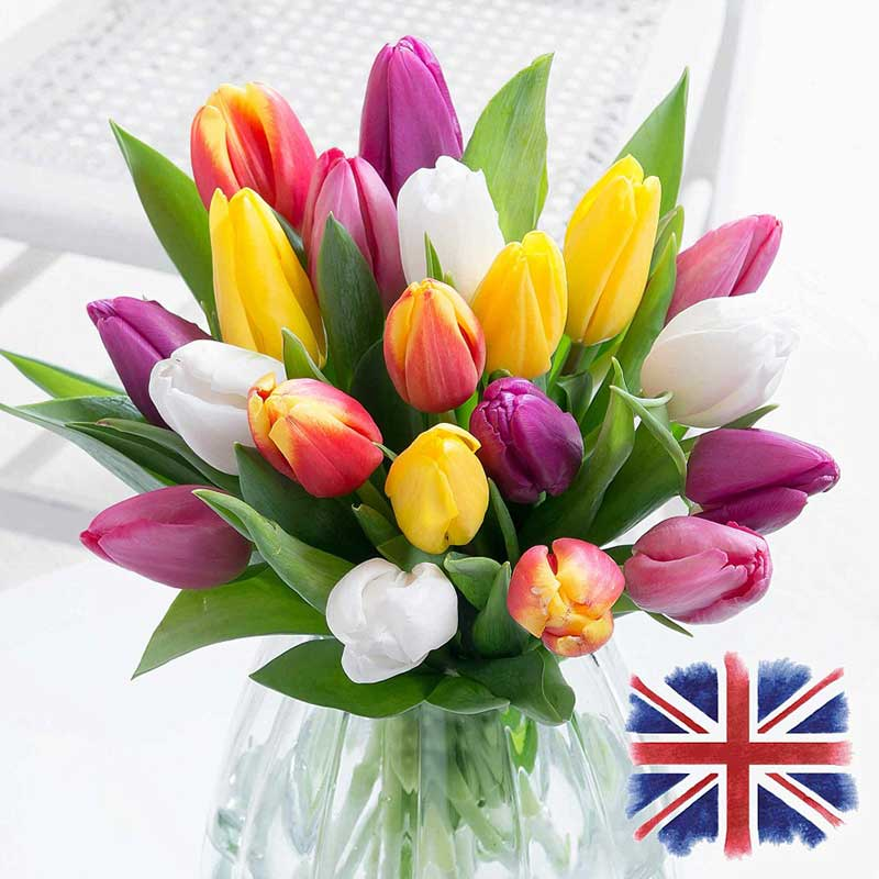 Traditional flower is the tulip for this anniversary, buy her or the couple some now.