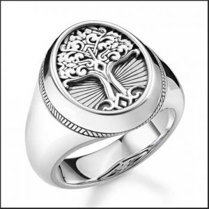 Buy him this Thomas Sabo Arizona Tree of Love Signet Ring for his anniversary gift