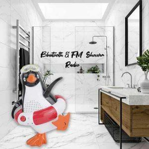 Buy her the Steepletone Penguin Shower Radio for this anniversary gift