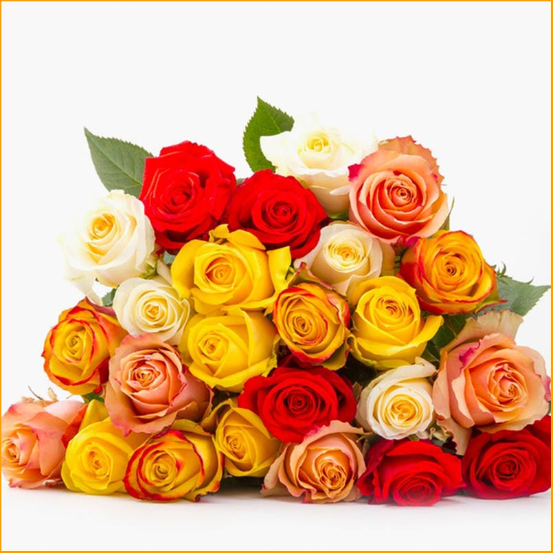 Buy the Prism Rainbow rose bouquet for this anniversary gift