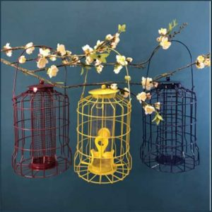 Buy her or him these Hanging Squirrel Proof Nut, Seed & Fat Ball Bird Feeders especially if they are nature lovers for this anniversary gift