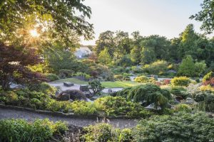 Rock Garden at RHS Wisley