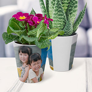 Buy them or each other a personalised photo plant pot for this anniversary gift